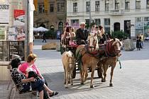 Akce Kouzlo tradice, kterou pořádá Moravské zemské muzeum, přiblížila dobová řemesla i historii zemědělství.