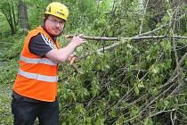 Redaktor Deníku Rovnost Petr Jeřábek si vyzkoušel práci stromolezce.