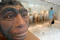 Exponáty v anthroposu přilákaly pozornost mnoha tisíc návštěvníků
