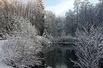 Lesní cesta Schindlerova a pohled na druhou retenční nádrž.