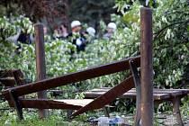Na skupinu kamarádů spadl v Tučkově ulici v Brně strom.