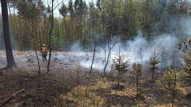 Úterní požár lesa nedaleko Hlubokých Dvorů na Brněnsku. Foto: HZS JMK