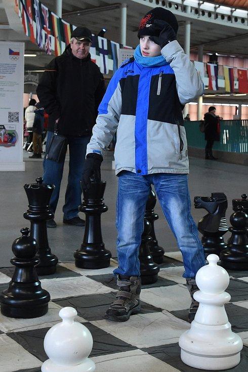 Středeční zábavný program na Olympijském festivalu v areálu brněnského výstaviště.