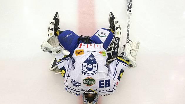 Hokejový brankář Martin Falter.