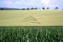 Kruhy v obilí u Šlapanic, u Radějova a u Strážnice se objevily přibližně ve stejné době. Podle odborníků ale nelze určit, zda spolu souvisejí.