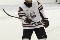 Hokejista Aleksejs Širokovs.