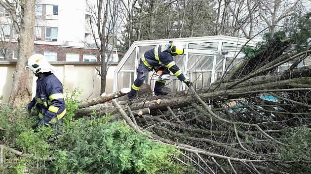 Silný vítr na v Brně shazuje stromy, strhává střechy. Foukat bude do neděle