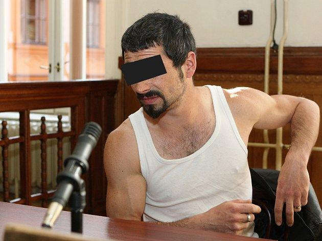 Krajský soud v Brně odsoudil muže, který po hádce s partnerkou odjel domů, kde se pokusil znásilnit její jedenáctiletou dceru.