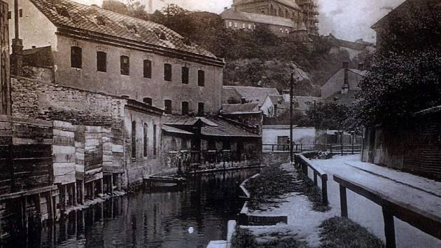 Jedna z vystavovaných fotografií