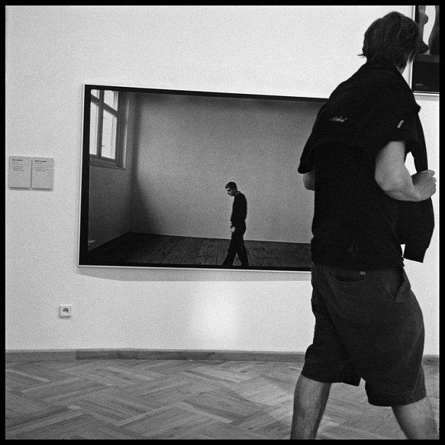 Milana Grygara zachytil Brabec v přirozeném prostředí ateliéru.