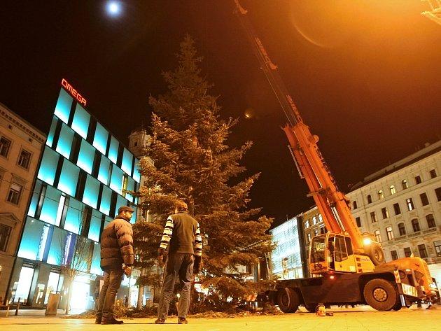 Vánoční strom na brněnském náměstí Svobody už zmizel. V pátek večer jej skáceli.