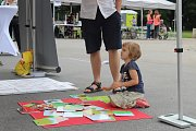 Zástupci města a rodinných organizací v úterý odpoledne sázeli na Moravském náměstí slunečnice. Upozornili tak na potíže pacientů s roztroušenou sklerózou při akci Rozsvítíme Českou republiku.