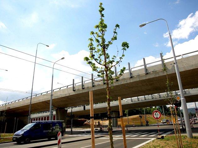 Mladé stromky u tunelů někdo navrtává a napouští je jedem. Po vandalovi pátrá policie.