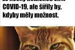 Těmito vtípky na koronavirus se lidé bavili v květnu na sociálních sítích. Poslední týdny zpestřila i ministryně financí Alena Schillerová a její (ne)angličtina.