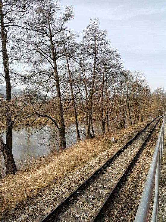 Únorový výlet okolo Čebína a Dolních Louček už voněl předjařím.