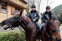 Policisté kontrolují chatové oblasti v Senoradech na Brněnsku.
