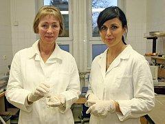 Mikropelety, které vyvinul tým Kateřiny Dvořáčkové (vpravo) a Miloslavy Rabiškové z Veterinární a farmaceutické univerzity v Brně, bezpečně doputují až do tlustého střeva.