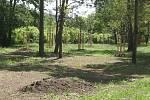 Od začátku letošního roku vykácela společnost Kaisler v brněnském Komíně tři sta sedmdesát stromů a keřů.