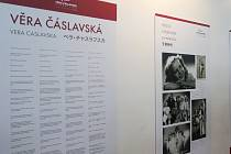 Festival RE:PUBLIKA na brněnském výstavišti.
