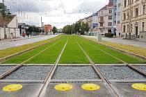 Otevření zrekonstruovaného tramvajového pásu v ulici Nové sady.