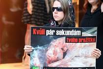 Neobvyklý smuteční průvod prošel v pondělí v podvečerních hodinách centrem města. Asi stovka lidí se na svém shromáždění snažila upozornit na zbytečnou smrt dvaašedesáti miliard hospodářských zvířat.