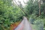 Téměř šedesát událostí souvisejících s počasím o víkendu zaměstnalo jihomoravské hasiče. Převážně se jednalo o spadené stromy.