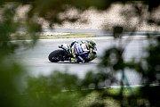 Kvalifikace na Velkou cenu České republiky, závod mistrovství světa silničních motocyklů v Brně 3. srpna 2019.