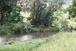 Meandry řeky Jihlavy mezi Novými Bránicemi a Cvrčovicemi se mají objevit na seznamu evropsky významných lokalit.