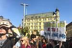 Studenti opět stávkovali za klima