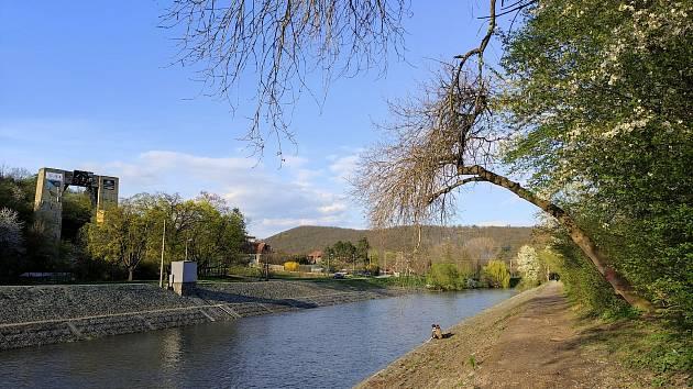 Cesta vedla od Křivé borovice po červené do Kočičího žlebu, dál k Betelné studánce a přes Rakovec k přehradě a kolem Svratky.
