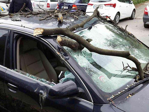 Kvůli silnému větru spadla část stromu na auto v brněnské Křídlovické ulici.