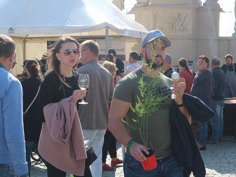 Slavnosti chřestu a vína nalákaly do Ivančic na Brněnsku opět tisíce návštěvníků.