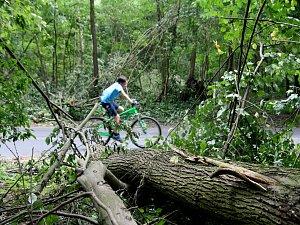 Bouřky v kraji stály pojišťovny miliony. Vstup do lesů je na vlastní nebezpečí