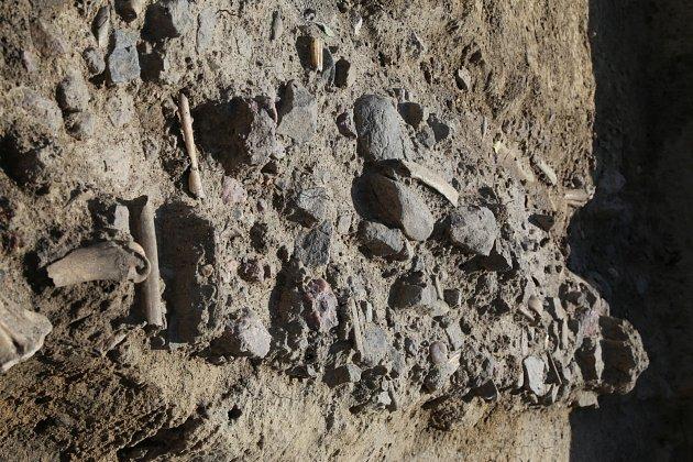 Konečně můžeme šlápnout na cestu, kudy nejspíš prošel ičeský král Vratislav I. při obléhání města. Těmito slovy reagoval historik Muzea města Brna Petr Vachůt na cestu zdoby kolem roku 1100, kterou objevili archeologové uNemocnice Milosrdných bratří.