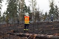 Požár v lese u Všechovic na Brněnsku.