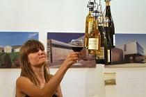 Vinařství, která snoubí nové technologie výroby vína a moderní architekturu, lidem od středy představuje nová výstava Architektura a víno ve střední Evropě. V brněnské Galerii architektury potrvá do druhého září.