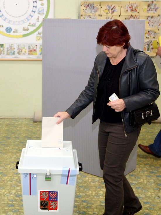 Senátní volby 2008 v Brně.
