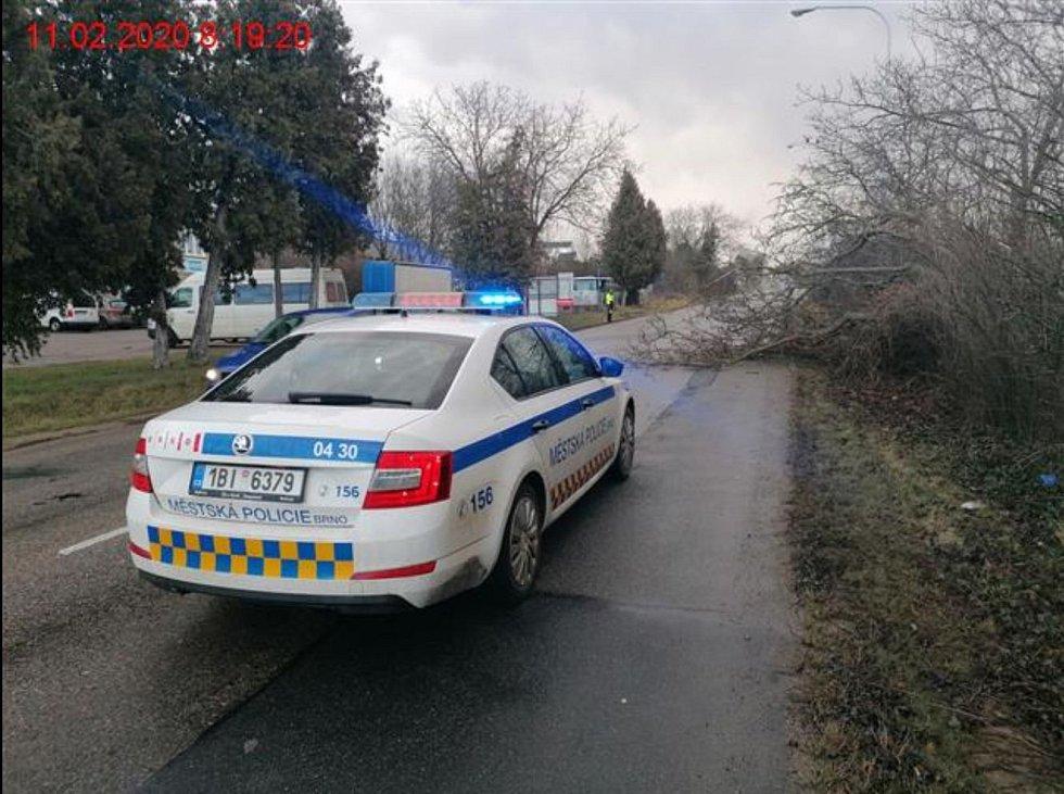Silný vítr vyvracel stromy a lámal značky. S následky pomáhali brněnští strážníci.