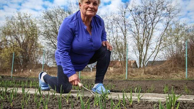 Komunitní zemědělství. Ilustrační foto.