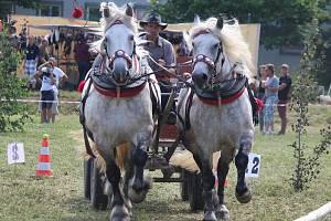 Na závodišti v Rosicích na Brněnsku se jel už patnáctý ročník vozatajských závodů chladnokrevných koňů, který byl kvalifikací na celostátní finále v Tlumačově.