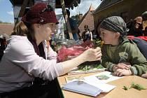 Jeden z minulých ročníku akce Den Země na hradě Veveří.