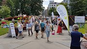 Na brněnském Moravském náměstí se u příležitosti Světového dne roztroušené sklerózy konala akce Rozsviťme ČR.