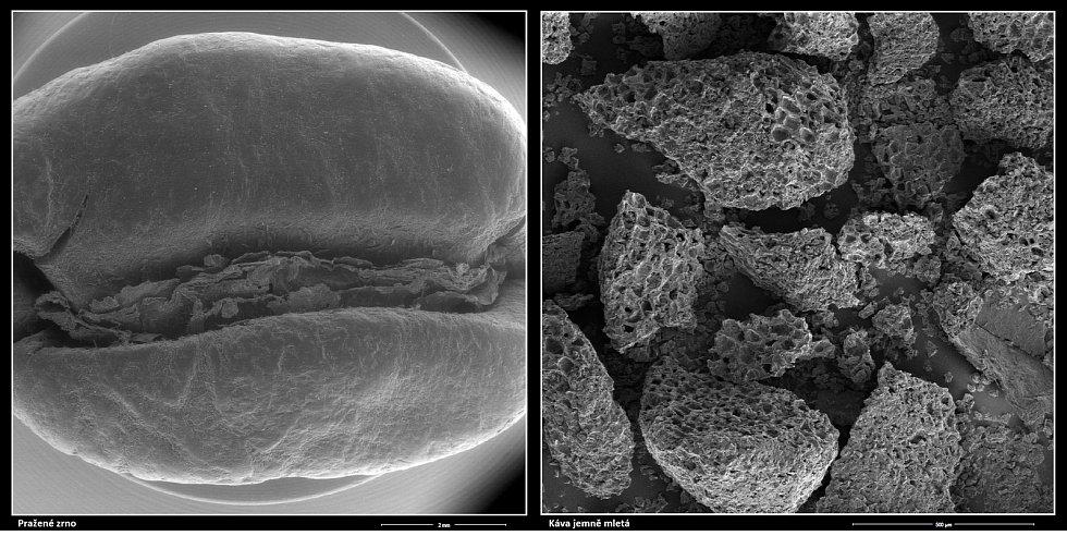 Snímek kávy z elektronového mikroskopu.
