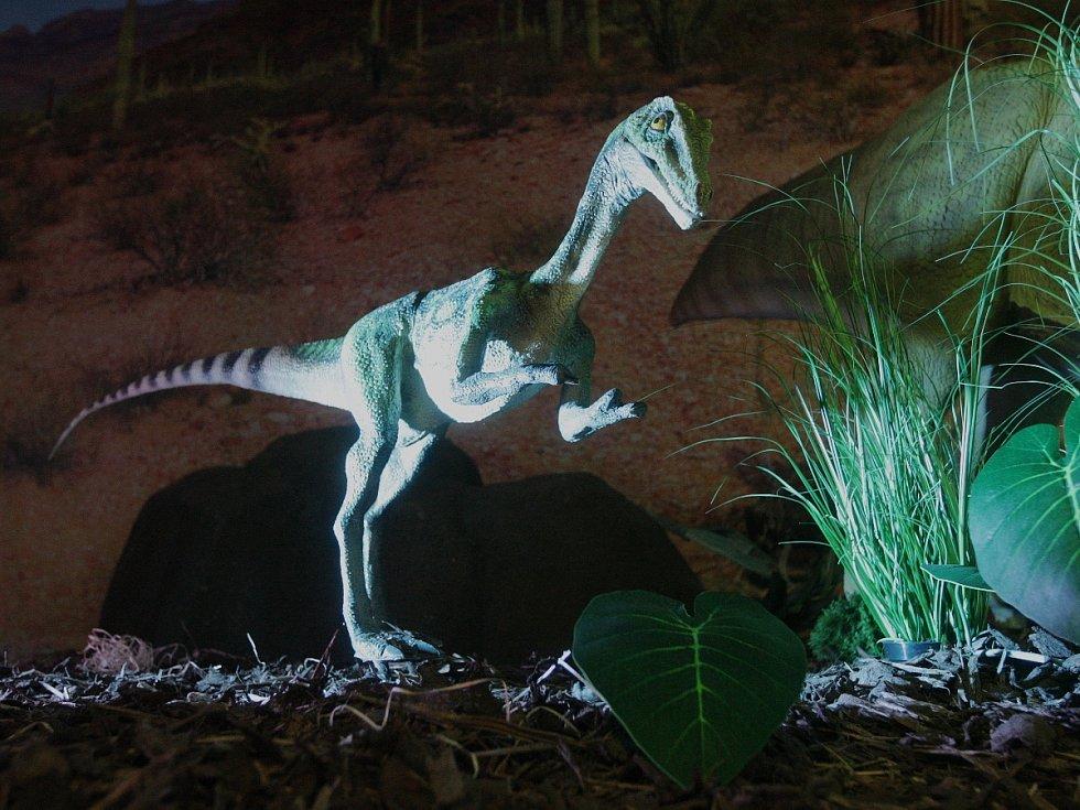 Hýbou se, žvýkají, vydávají zvuky a jsou v životní velikosti. Pohled na bývalé vládce Země si od pondělí užívají lidé v Technickém muzeu v Brně. Výstava robotických dinosaurů potrvá až do patnáctého března příštího roku.
