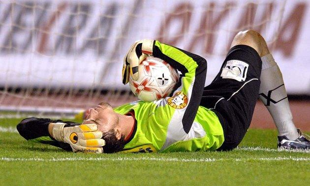 Brněnský gólman Martin Lejsal v zápase se Slávií zazářil.