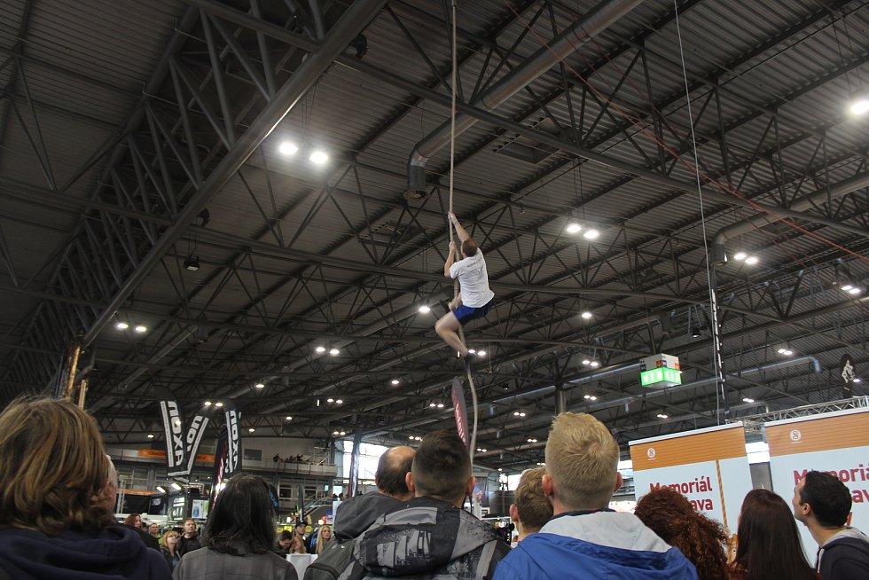 Nejrůznější druhy sportu, které se hrají ve stoje, vsedě i vleže, si mohli vyzkoušet návštěvníci festivalu Life! na brněnském výstavišti.