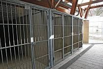 Kotce pro psy útulek opraví a přidá podlahové topení. Vznikne tak 36 nových míst pro kočky.