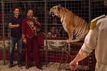 Je zvyklý si poradit s protihráči na fotbalovém hřišti, ve středu však musel čelit dvojici tygrů Ussurijských v kleci cirkusové manéže.