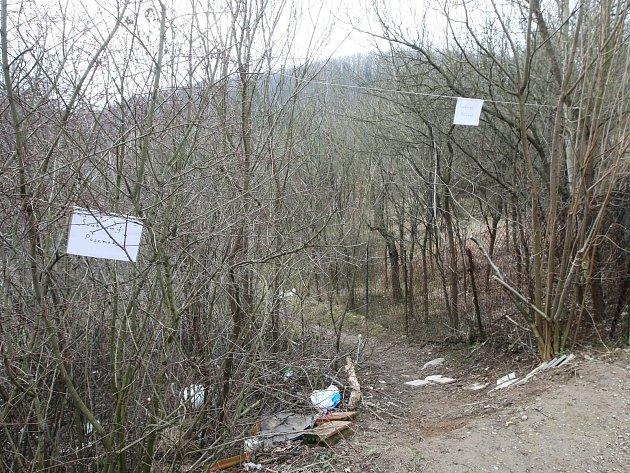 Pěšina nedaleko potoka Vrbovec. Ilustrační foto.