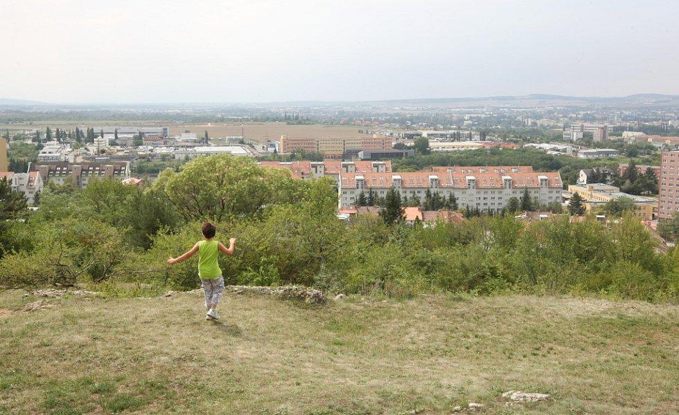 Kopec Bílá hora nabízí výhledy na všechny strany Brna.